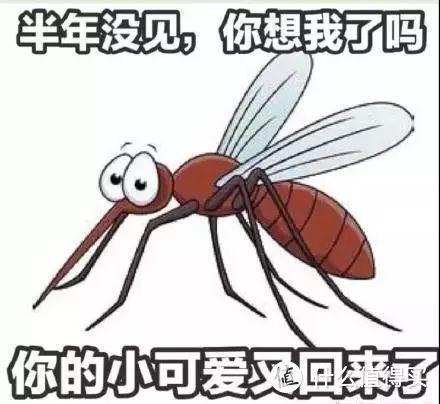 """蚊子遭殃!终于撸了个超实用的""""手办""""——小禾幻影2灭蚊灯体验"""