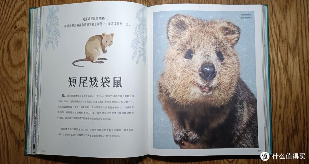 儿童节提前礼物-DK大自然百科全书典藏版