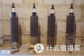从零开始学红酒「第七课:酿酒葡萄的种植」