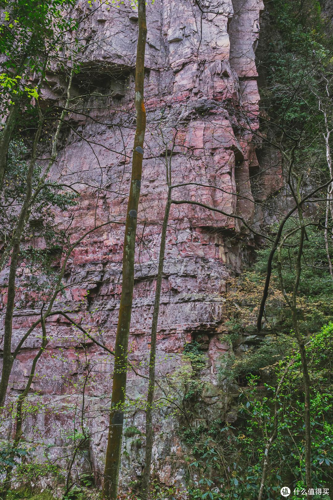 张家界的地质岩层