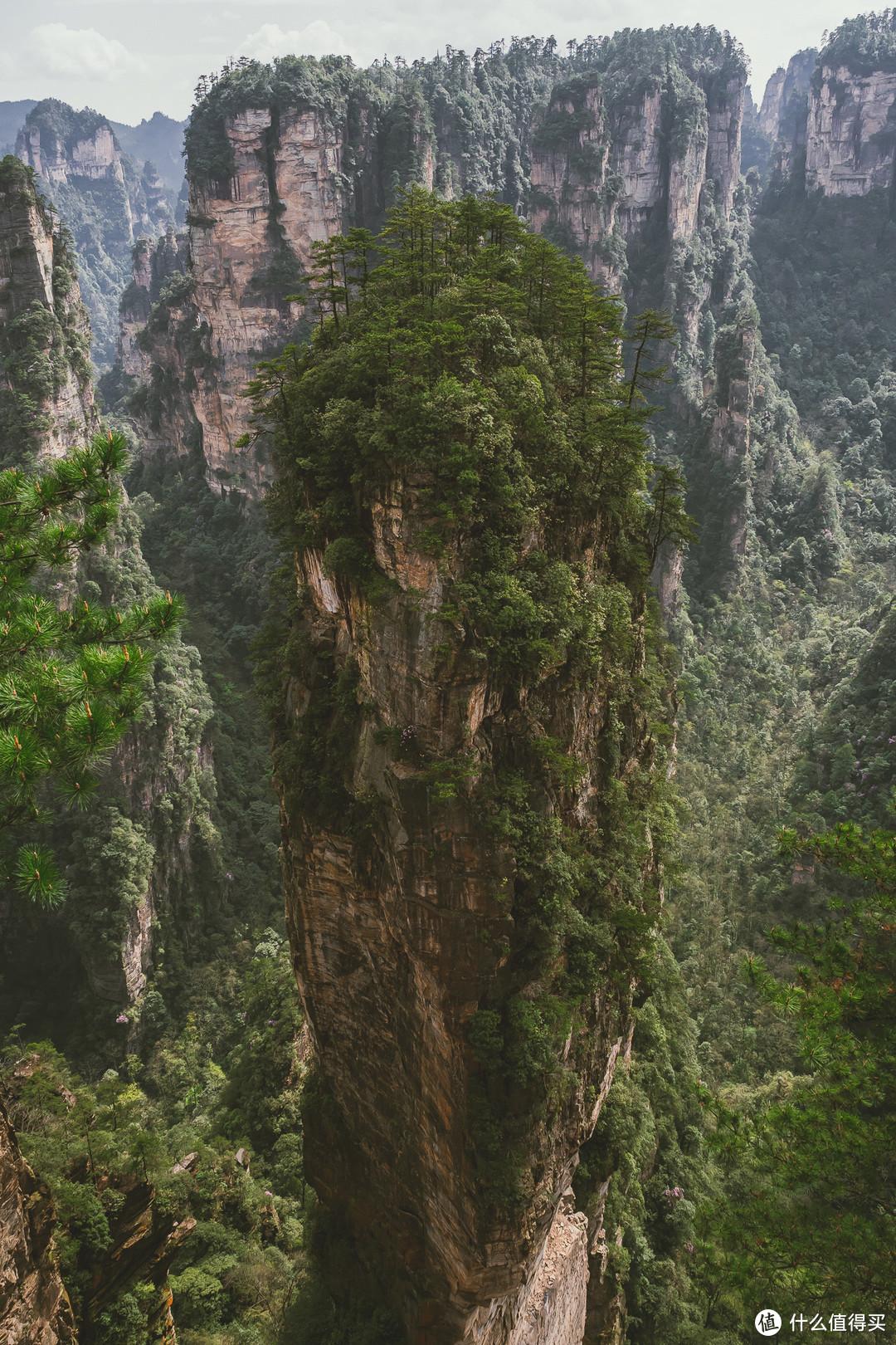 哈利路亚山