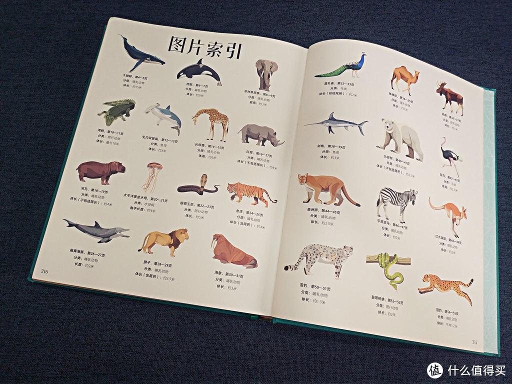 让儿子爱不释手的去获取知识:DK大自然百科全书典藏版体验