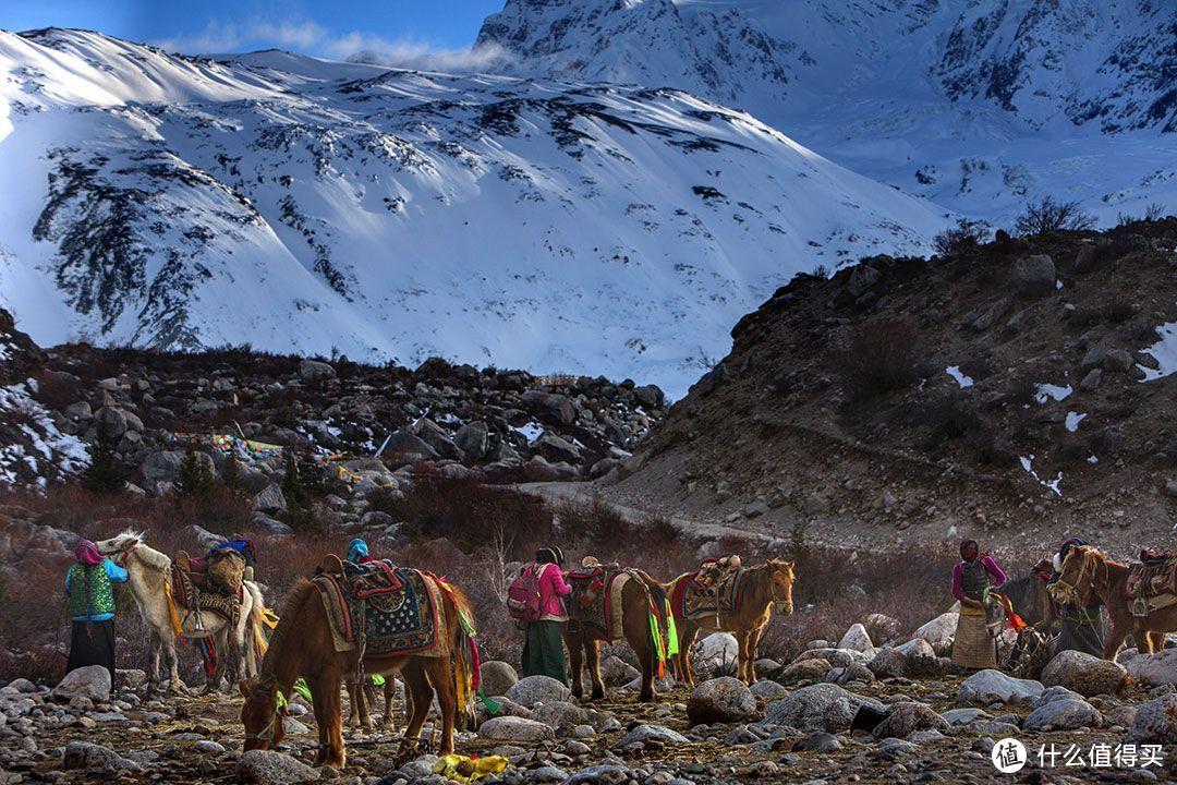 雪山下放牧的藏民们