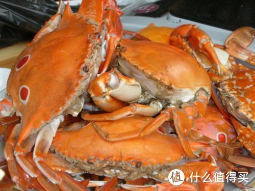 """大叔早市卖""""螃蟹"""",20元1个,路人嫌贵不愿买,识货大妈全买走"""