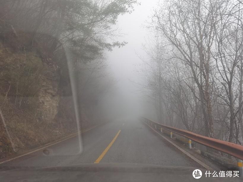景区里面,还是雾蒙蒙的