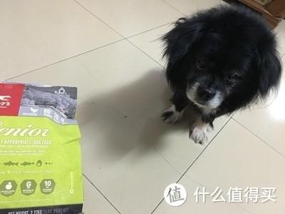 """""""这不是老年犬吃的口粮!低蛋白高淀粉不消化!""""老年组靠谱犬粮,这次真的来啦!!"""