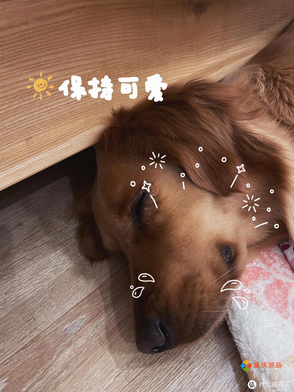 卖房环游记:重庆小夫妻放弃斋饭,丽江15元的米线分量惊人