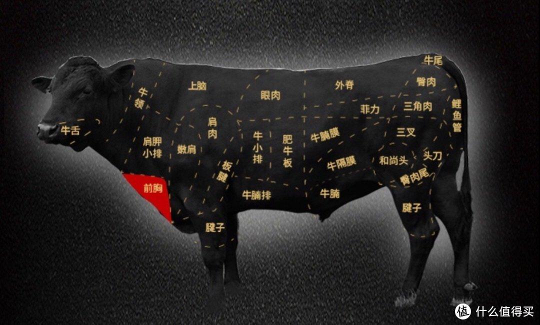 教你按部位买肥牛,一共15款优质肉肉带你解锁夏日火锅~