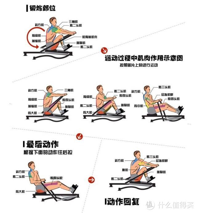 划船机真的有用吗?谈谈划船机的优势及选购要点