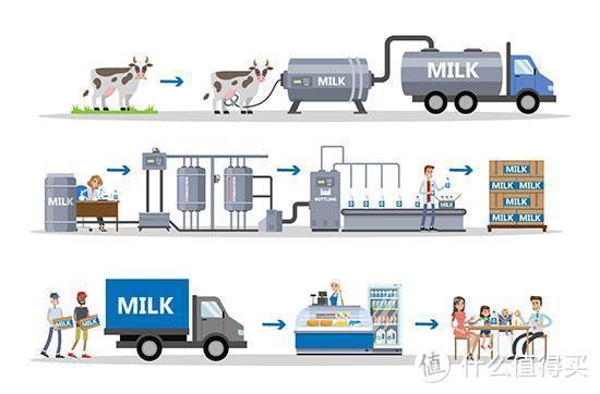 """食客:奶中""""灭绝师太"""",UHT奶是什么?巴氏奶又是什么?怎么选购?揭秘奶族复杂关系!"""
