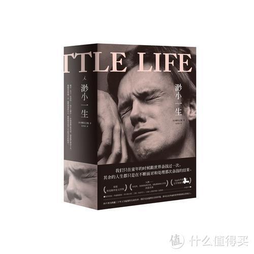 生硬而动人的悲剧——《渺小一生》
