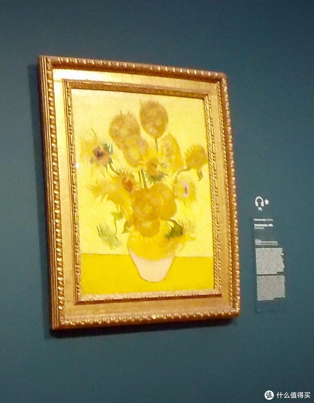 阿姆斯特丹梵高博物馆的向日康