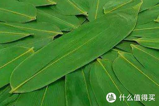 粽叶加它一煮,韧性十足不破皮,煮出来的粽子,颜色翠绿更香甜