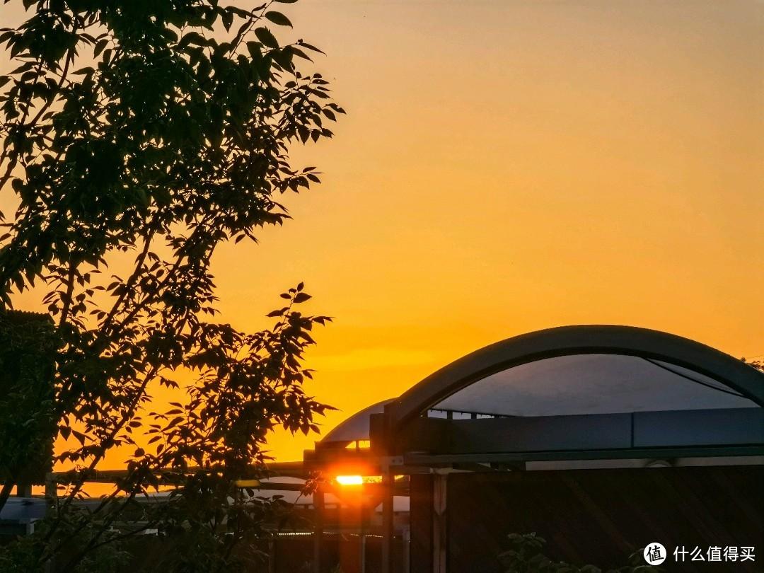 在傍晚的江苏园博园感受光影的流动