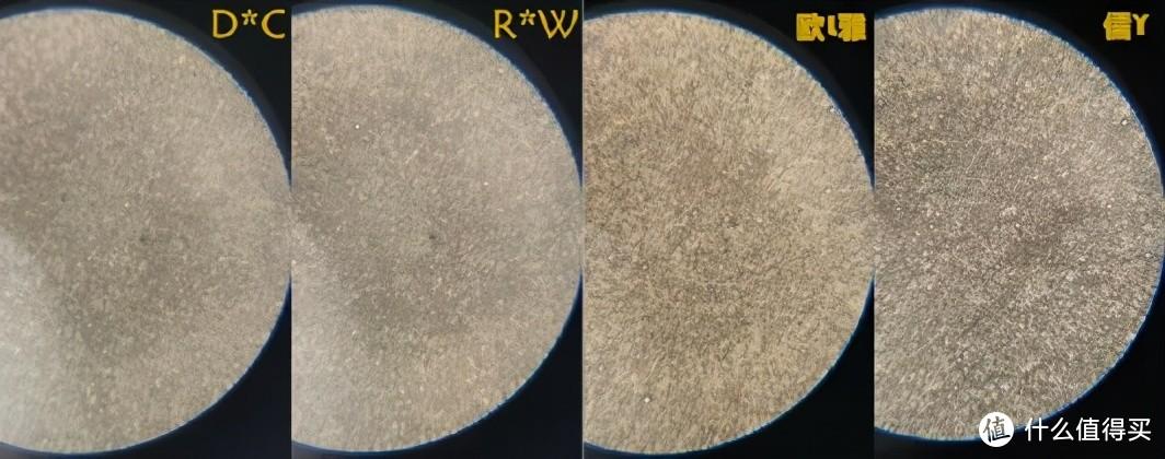 以上4款,颗粒分布较细密、均匀,还有一些细小的油脂颗粒,乳化能力较好