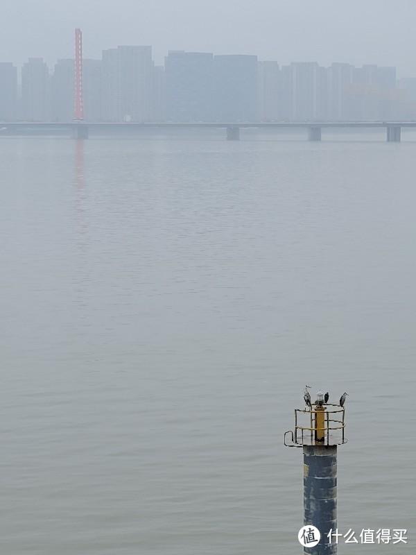 杭州城市阳台的江景