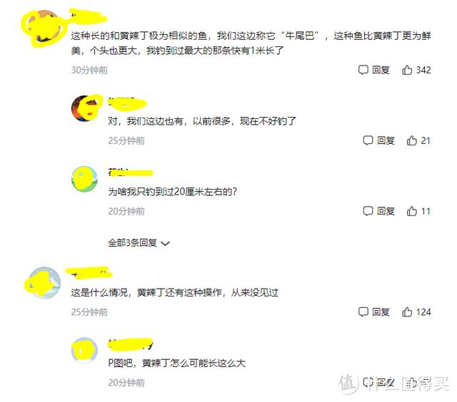 """广西男子钓获""""罕见""""牛尾巴鱼,近半米,网友:P图"""