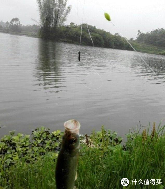 河边捞了半斤河虾,在水库钓了18条翘嘴鱼,这买卖划算不?