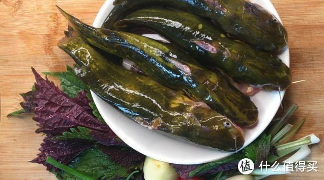 这种鱼酷似黄辣丁,常常以假乱真,各位钓鱼人,你们认识吗