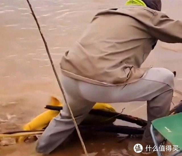 """黄河一老大爷钓获""""罕见""""黄辣丁,足足半米长,这鱼能吃吗"""