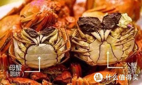 阳澄湖的大闸蟹在什么地方