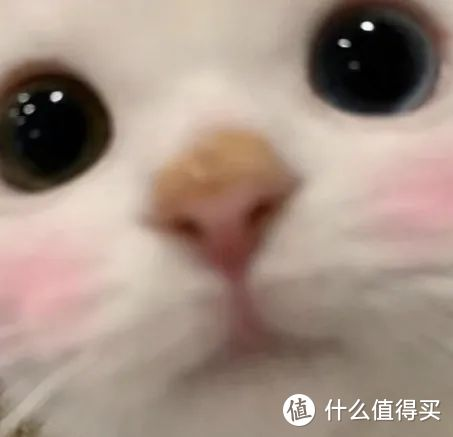 玻色因推荐:千元贵妇面霜的真香平替,我都整理好了!