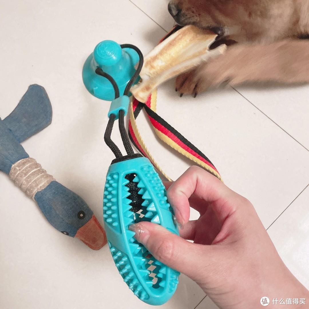 要想孩子不拆家,安心生活少不了它它它~618狗狗用品清单来啦!