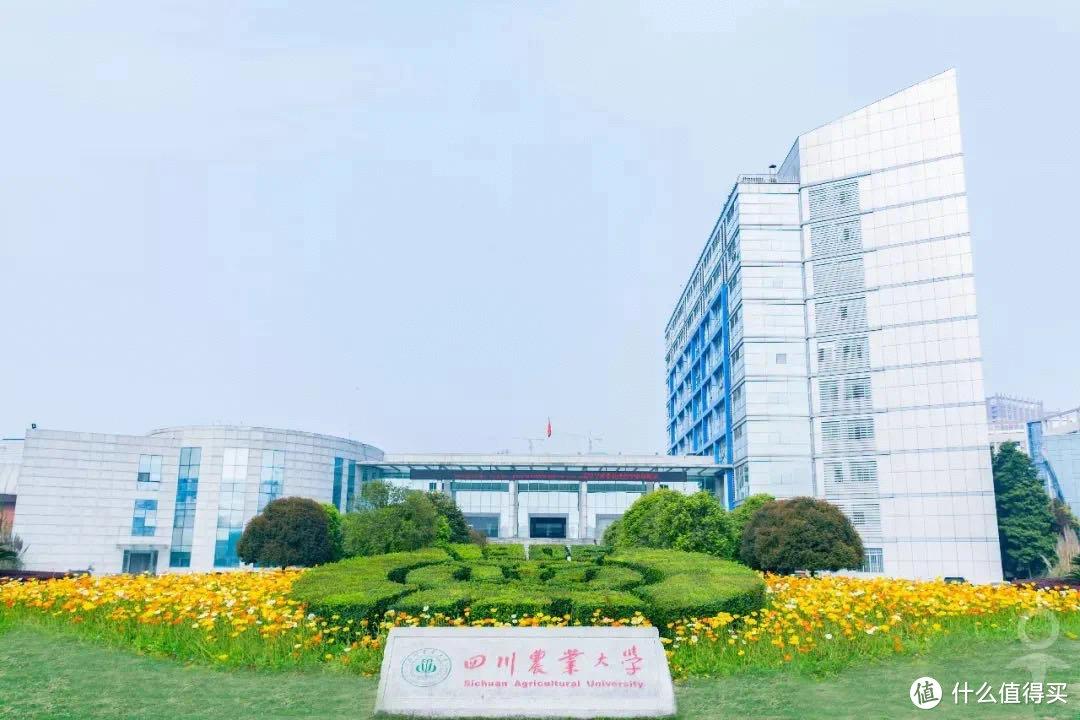 重庆考生最喜欢报考哪里的大学?本地很吃香,成都是第二优选