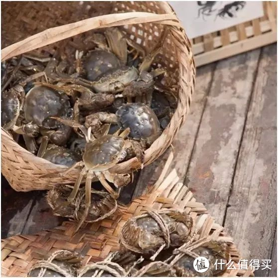 苏州阳澄湖吃大闸蟹的地方在哪里