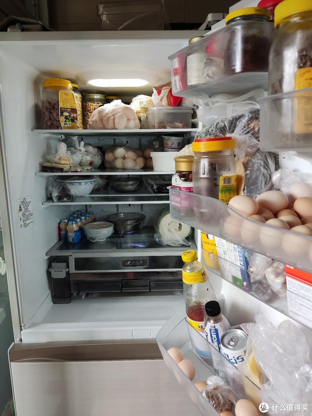晒出你家的东芝冰箱 495