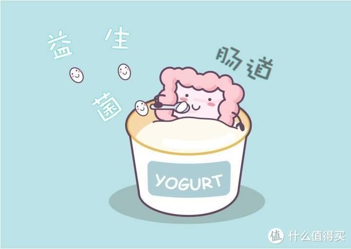 健身人士,酸奶选购指南