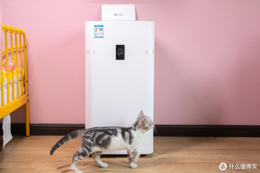"""过敏体质的娃和过敏原散播猫该如何取舍?也许352""""安敏""""除敏空气净化器能帮你两者兼得"""
