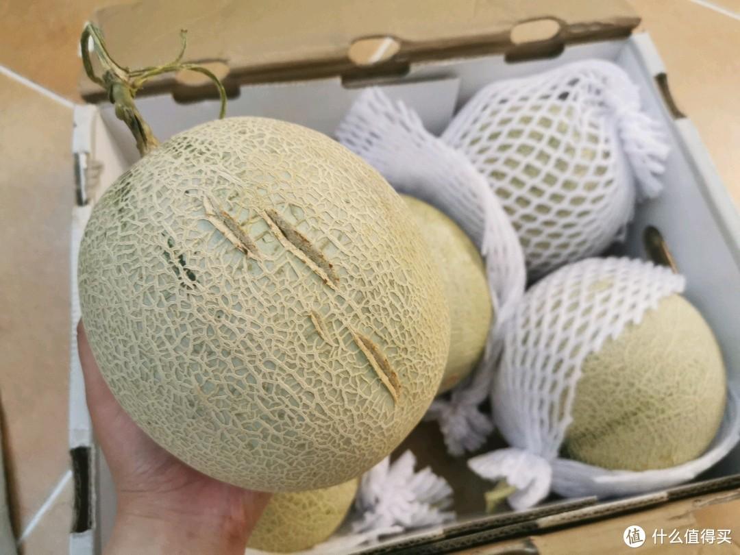 京东618必入好水果!玫珑瓜带给你无限多的甜蜜!盛夏必备瓜果自由来啦