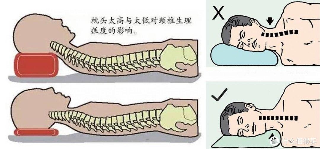 颈椎按摩仪怎么选?多年颈椎病患者对比四款颈椎按摩仪,把你想知道的统统告诉你
