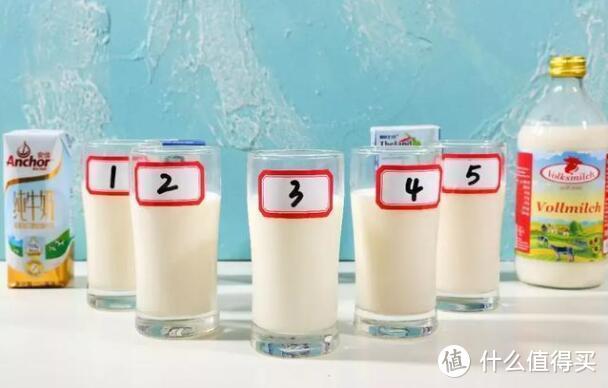 狂喝5瓶牛奶后,吐奶整理出了这份测评