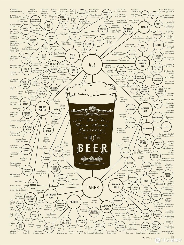 啤酒分类打拳
