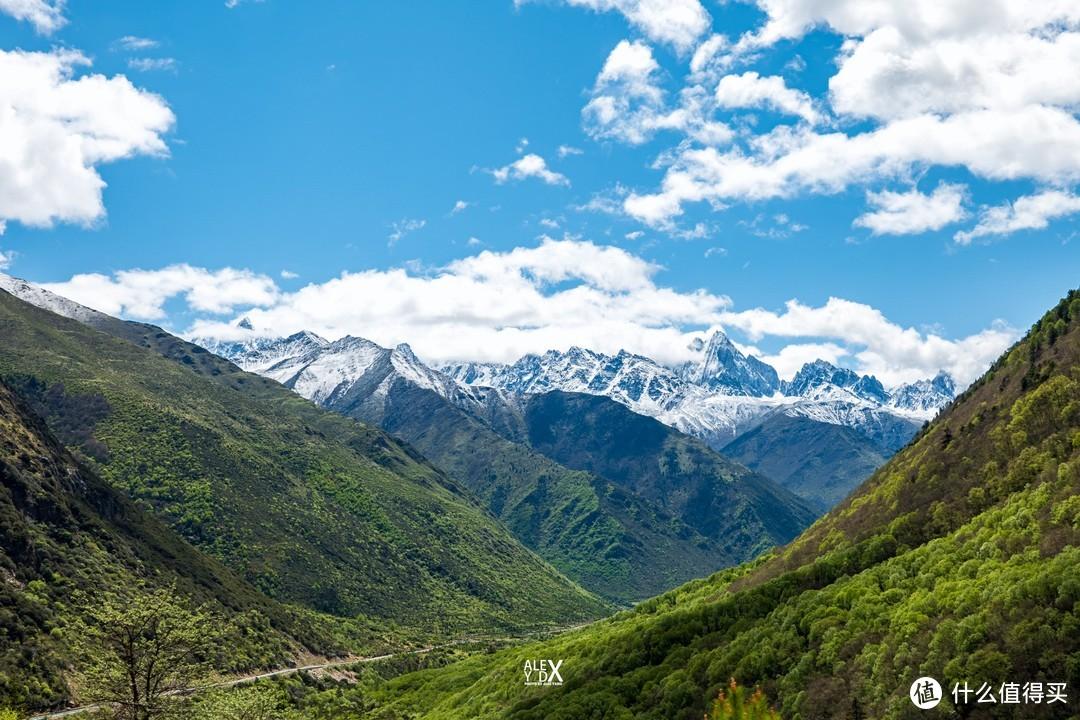 无名雪山,绿植逐渐增多,意味着海拔正在下降。