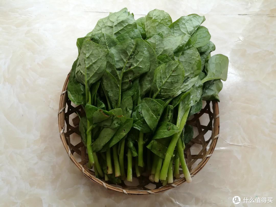 """可以吃的""""多肉植物"""",1.5元一斤,味道很特别,家人吃上瘾了"""