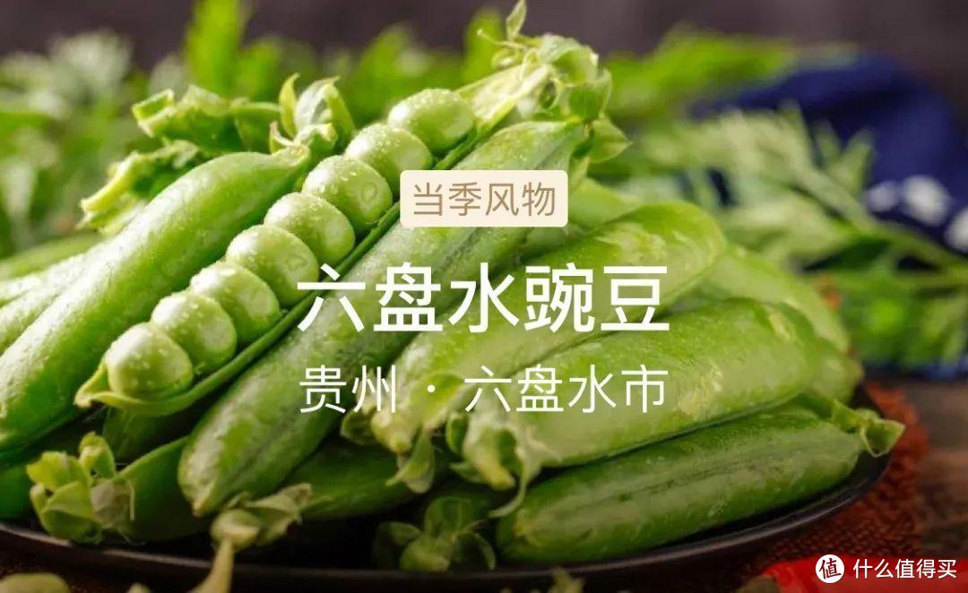 风物日历6.21|夏至已至,一口鲜甜的豌豆饭绝对不能错过