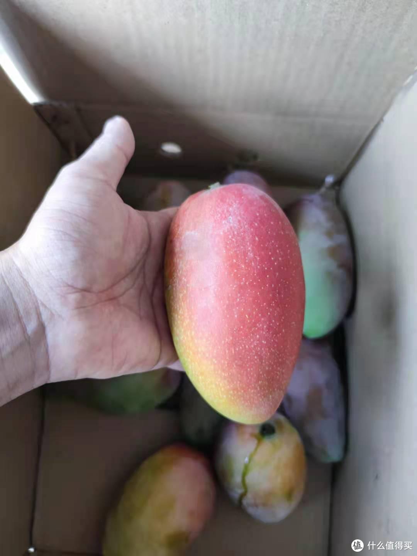 这是我收到的实物图,看着还青的果子,放两天也都是这个颜值