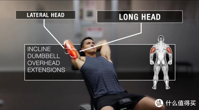 只有哑铃,该如何训练肱三头肌?