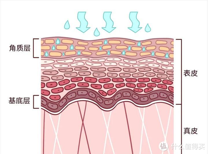 纯干货分享 男生护肤小知识(三)补水保湿比你想象得更重要!