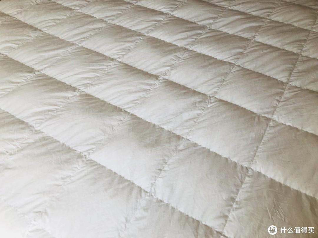干货分享:夏天盖鹅绒被什么感受?你们想要了解的睡感精华都在这里了