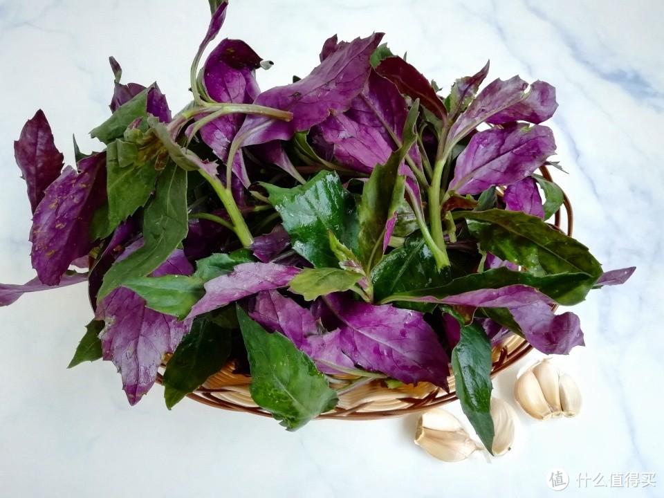 唯一不打农药的蔬菜,碰运气才能买到,改善贫血,女人多吃气色好