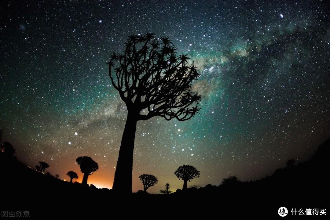 书评 |《有本事》:星空之下,时间之外,只有自在