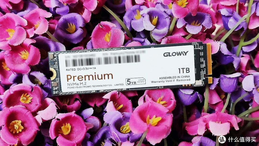 """光耀华夏心,威震中国""""芯"""":光威GLOWAY Premium NVMe M.2 1TB使用体验"""