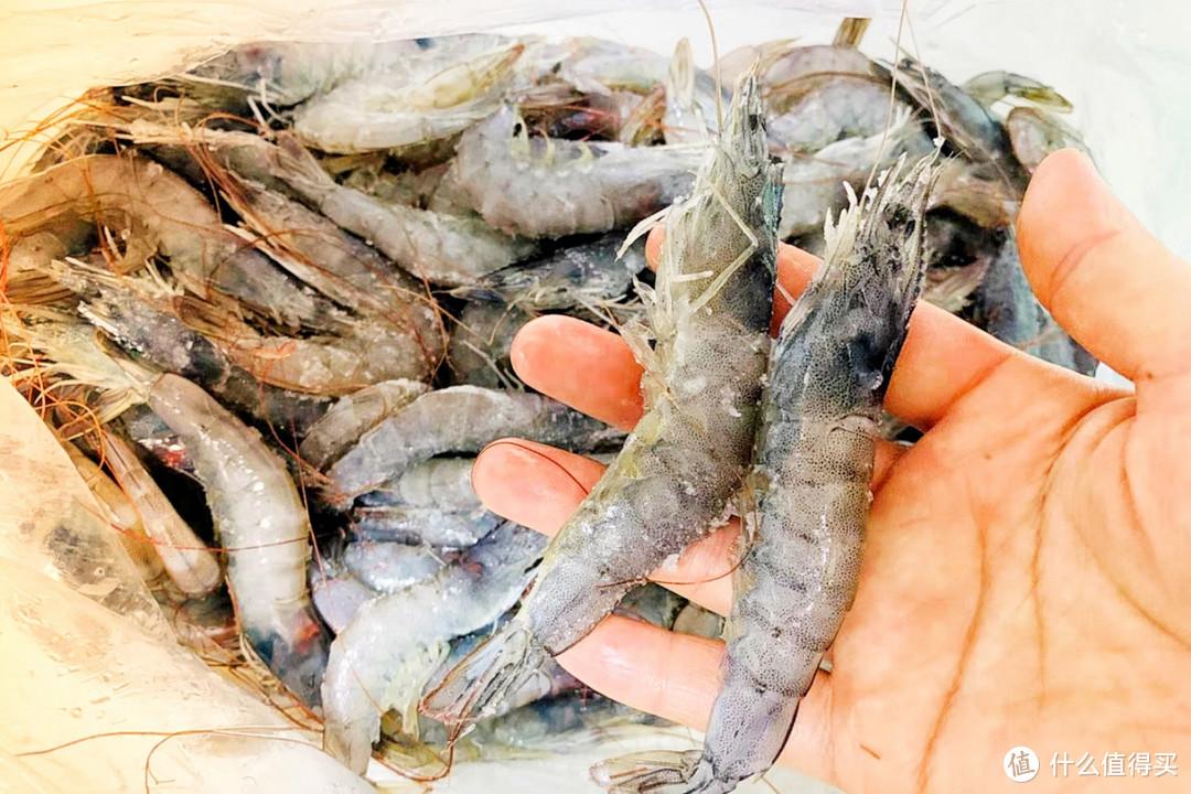 碰到4种虾,再便宜都不要!海鲜店老板都不吃,弄懂再买不吃亏