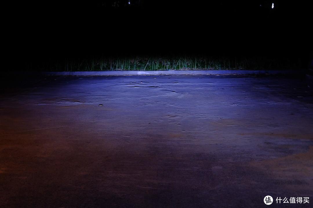 近光灯开启效果,到前方竹林距离大概有20m