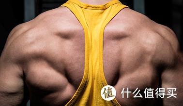 自然状态下能增长多少肌肉?肌肉增长的速度有多快?