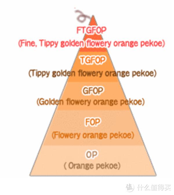 国外红茶的分级制度